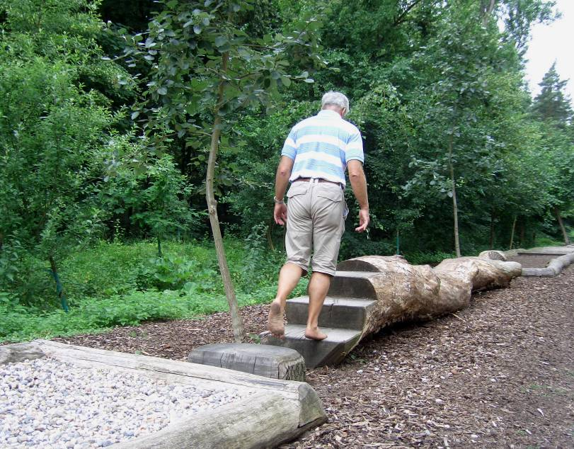 Backyard Nature Playground : barefoot parks sensation paths natural playground playscape5