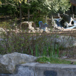 carkeek park playground natural playscape barker landscape architects4
