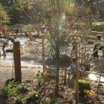 westmoreland nature play area natural playscape2