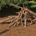 westmoreland nature play area natural playscape5